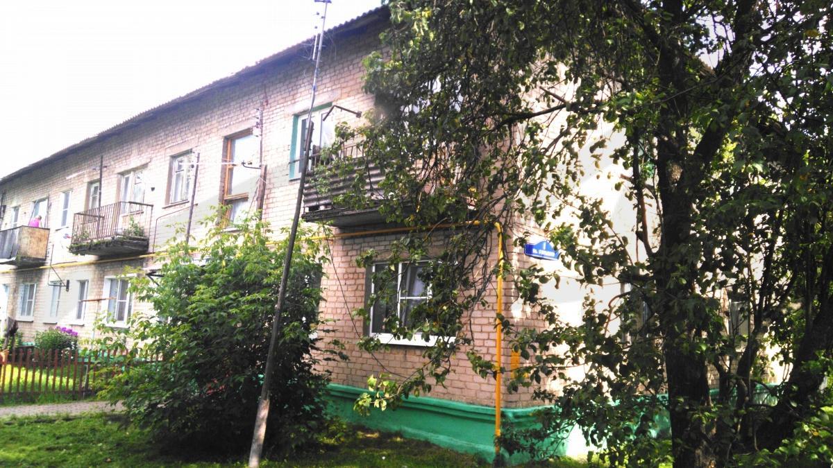 Московская обл, Ногинский р-н, Мамонтово с, Горького ул, 1