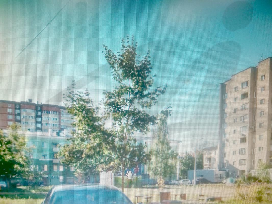Московская обл, Электросталь г, Корнеева ул, 27