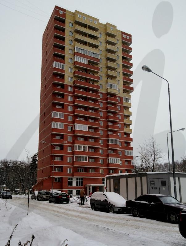 Московская обл, Ногинский р-н, Ногинск г, Аэроклубная ул, 17, корп 2