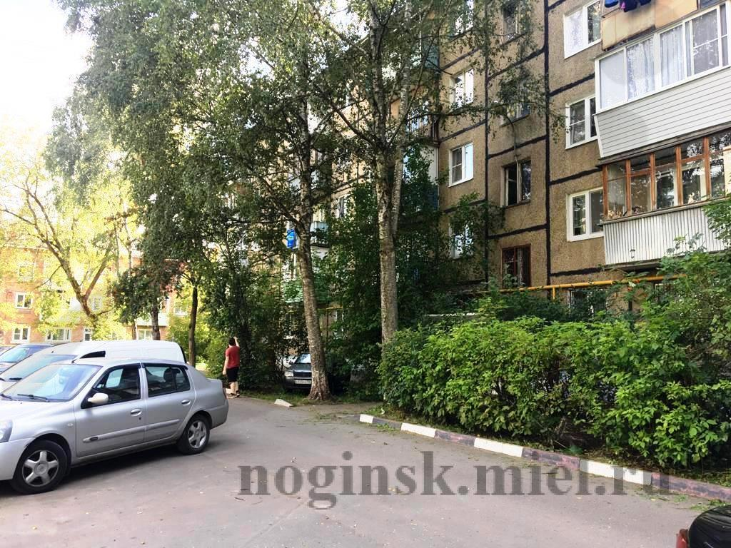 Московская обл, Ногинск г, Молодежная ул, 8А